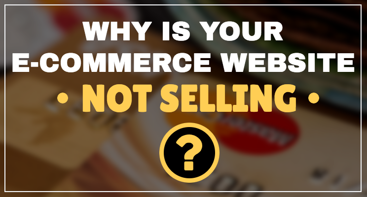 Why is my E-Commerce Website Not Selling?