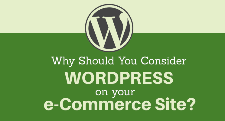 Why Should You Consider WordPress On Your e-Commerce Site?